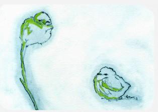 BirdsPlayThumb3